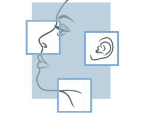Hals-Nasen-Ohren
